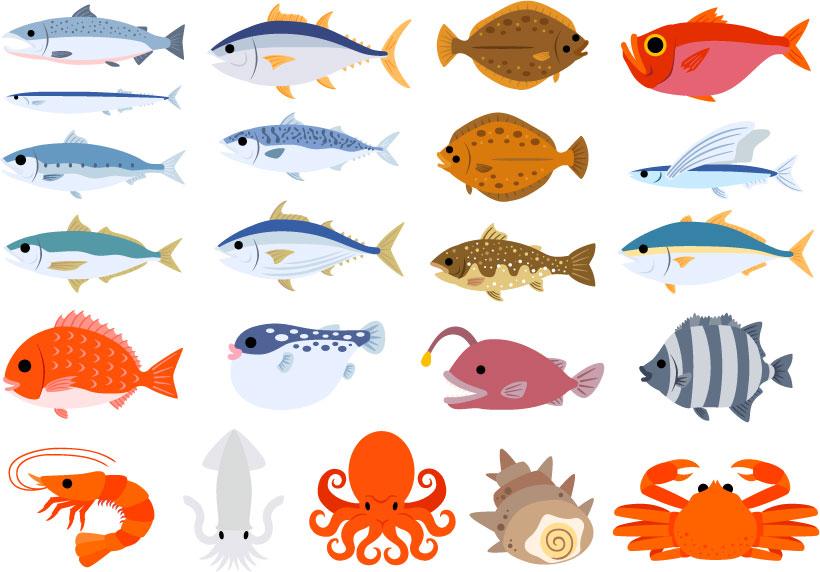 匹や尾で数えられる魚たち