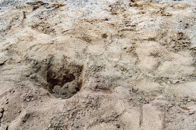 泥にある穴